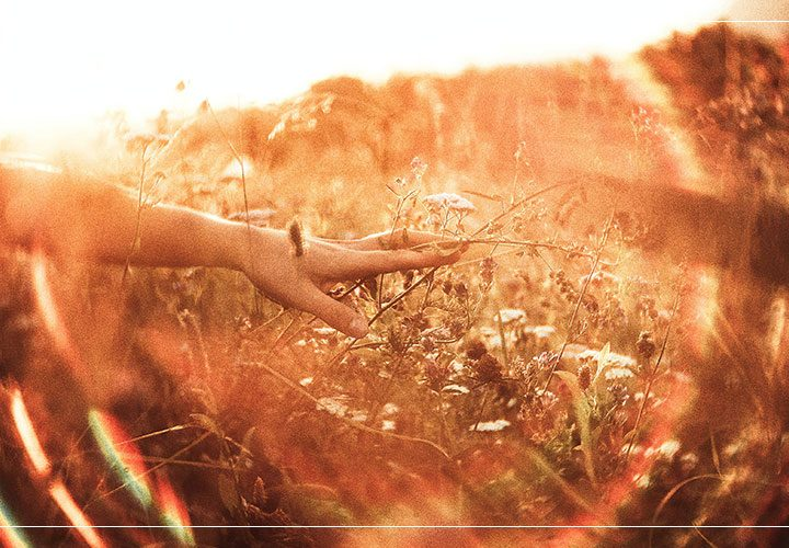 What is the difference between Physical and Mental Mediumship?